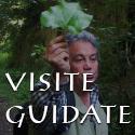 Visite Guidate